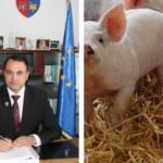 REȘEDINȚĂ DE JUDEȚ? Hmmm… Doar cu numele! Virusul pestei porcine africane, confirmat într-o gospodărie cu 28 de porci, în Focșani.